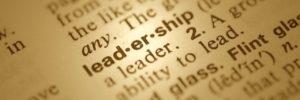 The Pastor / Leader