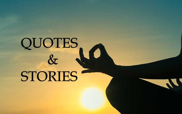 Quotes by Wayne Nalls